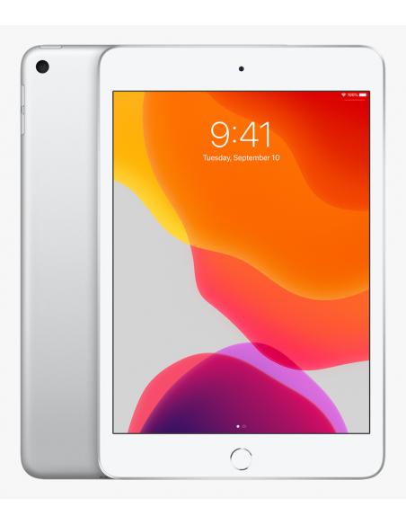 iPad 7  2019 ( A2197 )