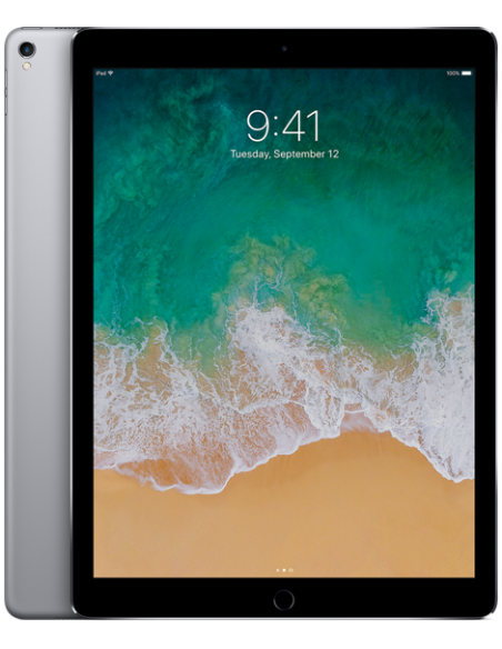iPad Pro 12.9 2nd Génération (  A1670 )
